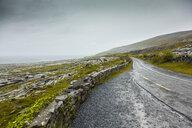 Bothar nA hAillite, County Clare, Ireland - ISF13091