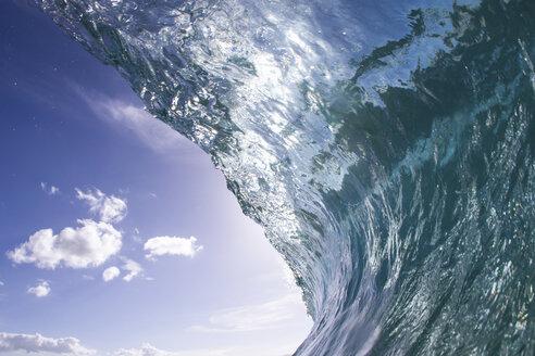 Barrelling wave, Hawaii, USA - ISF14213