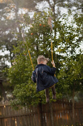 Young boy swinging high on garden swing, rear view - ISF14402