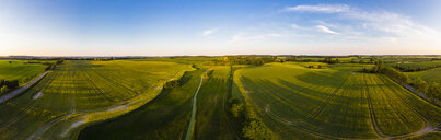Germany, Mecklenburg-Western Pomerania, Teterow, Aerial view of fields - AMF05784