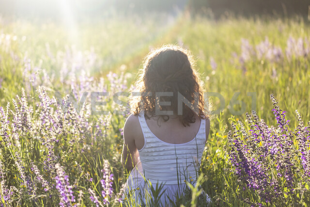 Young woman sitting on flower meadow, rear view - SARF03811