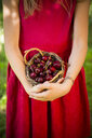Little girl holding basket with cherries - LVF07140