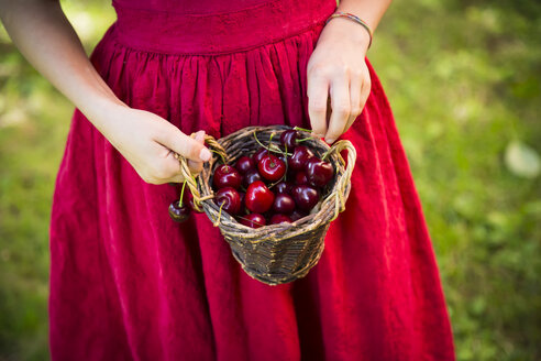Little girl holding basket with cherries - LVF07146