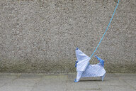 Origami dog in front of concrete wall - PSTF00153