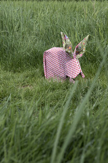 Origami rabbit on meadow - PSTF00159