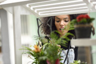Young woman watching potted plants of a flower shop - JSMF00367