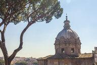 Dome of Santi Luca e Martina church, Rome, Italy - CUF35610