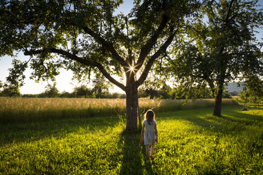 Young girl walking on meadow to tree at summer evening - LVF07165