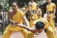 Vietnam, Hanoi, men exercising kung fu - WPEF00532