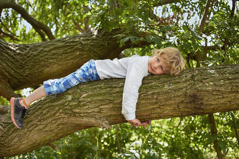 Boy lying on forest tree branch - CUF37543