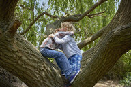 Two brothers hugging in forest tree - CUF37546