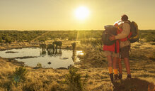 Couple looking at elephants at watering hole at sunset, Etosha National Park, Namibia - CUF37600