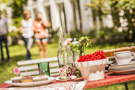 Garden party food table, group of friends in background - CUF37831