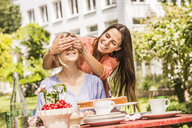 Two female friends in garden, one coverings the others eyes with hands - CUF37834