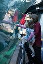 Grandchildren and grandparents looking at fish in aquarium - ISF14723