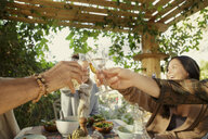 Friends raising a toast at garden party - ISF14756
