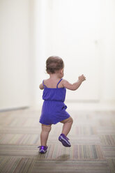 Toddler girl learning to walk - ISF14801