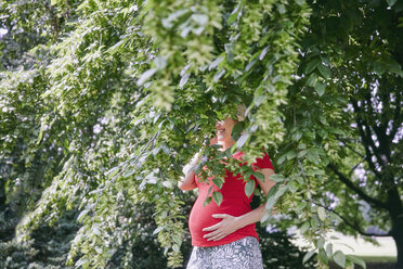 Smiling pregnant woman standing behind branches of a tree - RHF02056