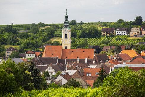 Austria, Lower Austria, Waldviertel, Wachau, Langenlois, Parish Church, vineyard - WWF04231