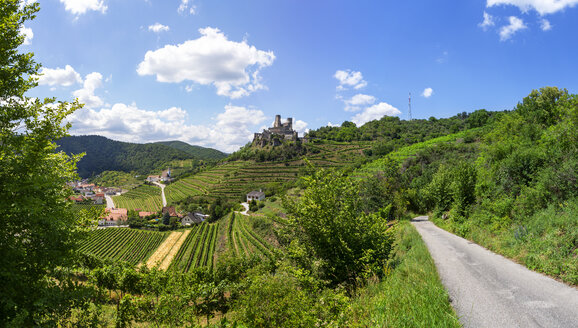 Austria, Lower Austria, Wachau, Kremstal, Senftenberg, Castle ruin Senftenberg - WWF04240