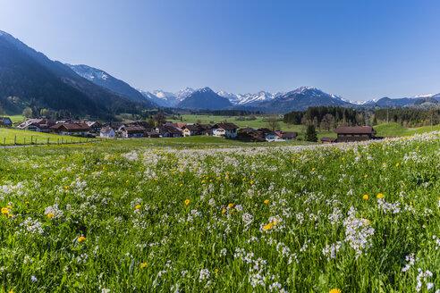 Germany, Bavaria, Allgaeu, Oberallgaeu, Allgaeu Alps, Illertal, Rubi - WGF01199