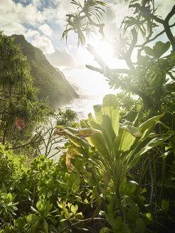 USA, Hawaii, Kauai, sunset at Na Pali Coast - CVF00930