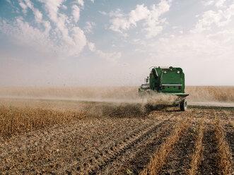 Serbia, Vojvodina, Combine harvester in soybean field - NOF00043