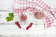 Red currant spritzer - LVF07212