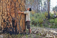 Young man in forest hugging large tree trunk, Los Angeles, California, USA - ISF15877