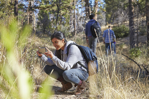 Young female hiker photographing on smartphone in forest, Los Angeles, California, USA - ISF15880