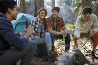 Four young adult friends chatting by campfire in forest, Los Angeles, California, USA - ISF15889