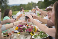 Family and friends making a toast at outdoor meal - ISF16003