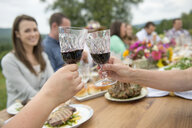 Family and friends making a toast at outdoor meal - ISF16075