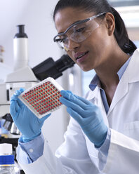 Female scientist preparing a multi well tray containing blood samples for clinical testing in the laboratory - ABRF00211