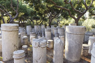 Greece, Attica, Athens, ancient grave yard Kerameikos, old columns - MAMF00160