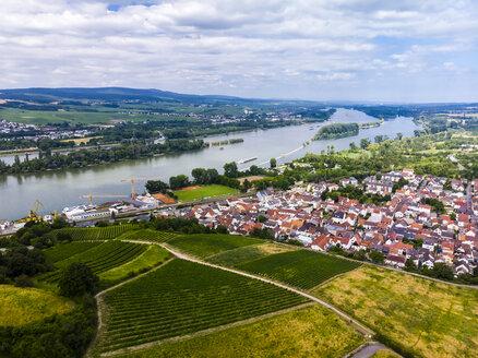 Germany, Rhineland-Palatinate, Bingen region, Rochus Mountain, Aerial view of Kempen am Rhein and Ruedesheim am Rhein - AMF05803