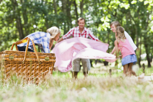 Family having picnic in park - CUF39304