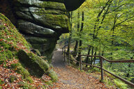 Czechia, Bohemian Switzerland, Ticha Souteska, hiking trail in the Edmundsklamm - RUEF01902