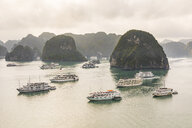 Vietnam, Ha Long bay, with limestone islands and tourboats - WPEF00646