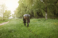 Couple walking in park under umbrella - ISF16622
