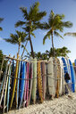 Row of surfboards on beach, Waikiki, Oahu, Hawaii, USA - ISF16865