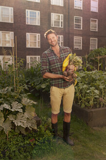 Mid adult man with harvested beetroot on council estate allotment - CUF39956