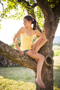 Girl sitting on tree in summer looking down - LVF07254