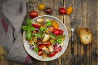 Panzanella made of roasted Ciabatta, rocket, red onions, tomatoes and basil - LVF07271