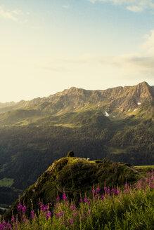 Switzerland, Ticino, Airolo, morning mood at Gotthard Pass - DWIF00933