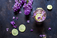 Glass of homemade lilac lemonade with slices of limes - SBDF03658
