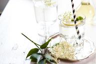 Glass of homemade elder lemonade with slice of lemon - SBDF03664