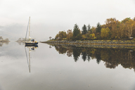 UK, Scotland, sail boat and tree reflections on a lake in the highlands - WPEF00688