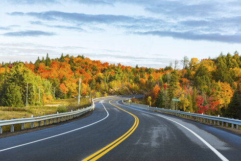 Canada, Ontario, main road through colorful trees in the Algonquin park area - WPEF00706