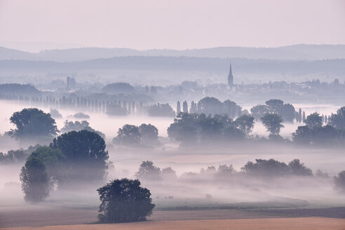 Germany, Baden-Wuerttemberg, Constance district, Radolfzell, view to Radolfzeller Aach in the morning with fog - ELF01888
